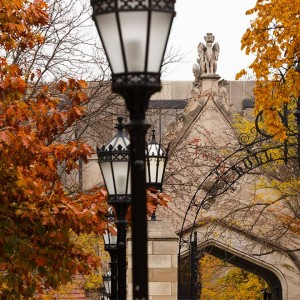 Fall scene at University of Chicago quad