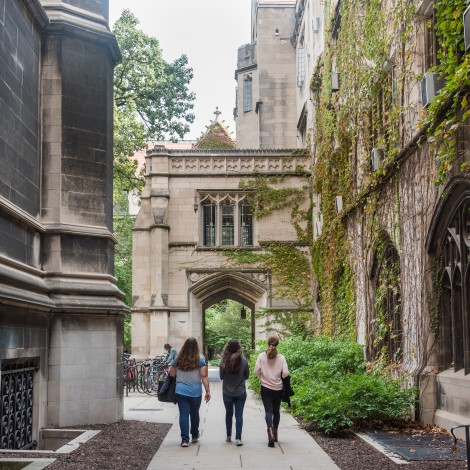image of students on quad